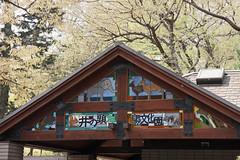 井の頭自然文化園(Inokashira Park, Tokyo, 2011)
