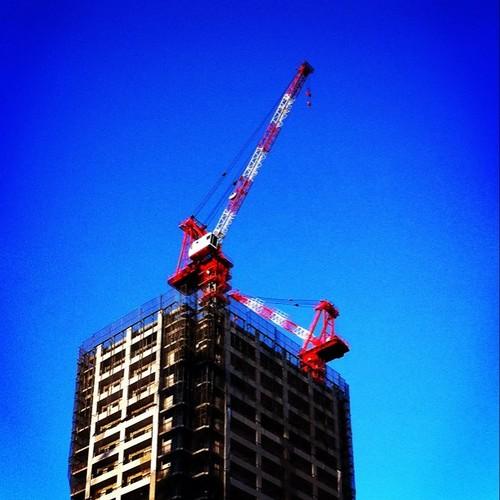 青空に向かって! みんなー、あと半日、がんばろ~!v( ̄Д ̄)v イエイ #sky #crane