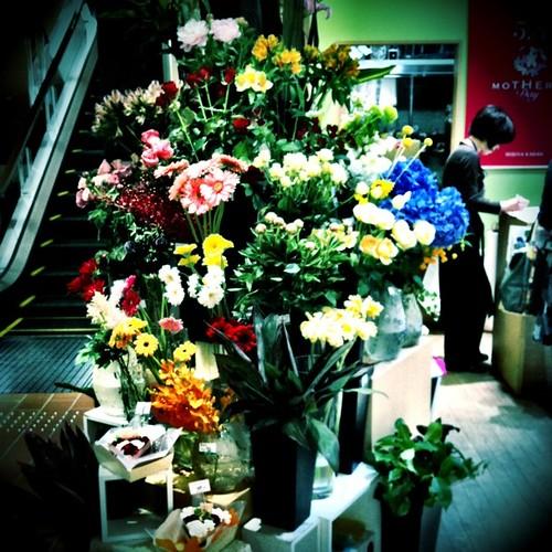 もうすぐ母の日。みなさん、準備はできましたか? #flower