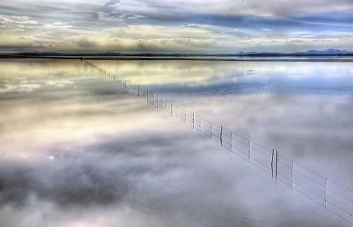 flooded fencesm