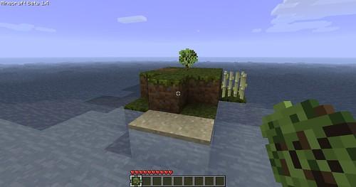 Minecraft Survival Island - Sapling