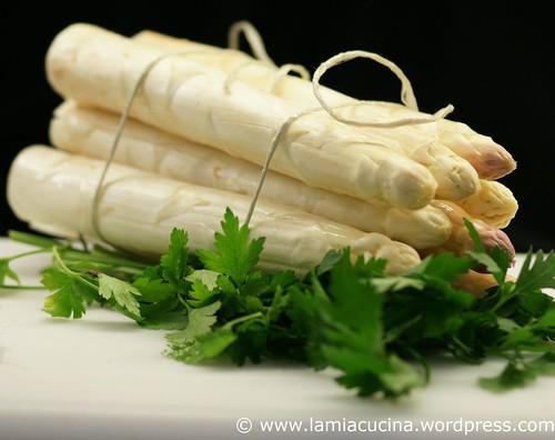 Asparagus 0_2011 05 04_3475