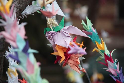 Paper cranes in Sofia