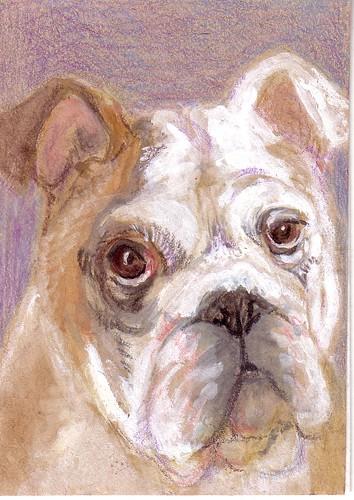 ATC: Bulldog (traded)