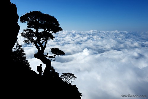 A Hiker Above the Clouds