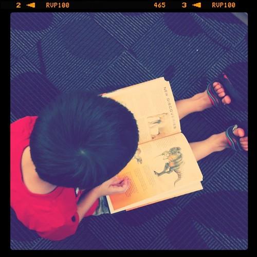 Dinosaur book! His current favorite.