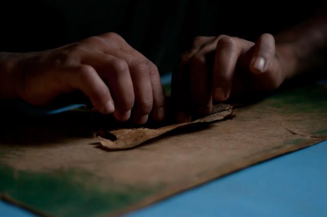 Rolling a cigar in Cuba