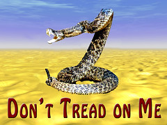A Photographic Gadsden Flag: Don't Tread on Me