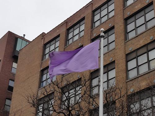 018/365 Purple flag