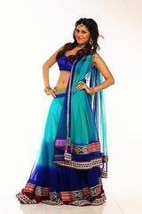 Bollywood Actress ANCHAL SINGH Photos Set-1 (23)