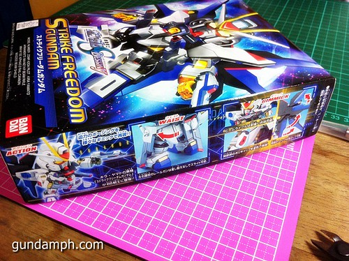 SD Strike Freedom Gundam (4)