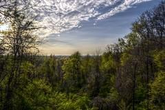 chestnut ridge observation deck