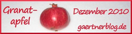 Garten-Koch-Event Dezember 2010: Granatapfel [31. Dezember 2010]