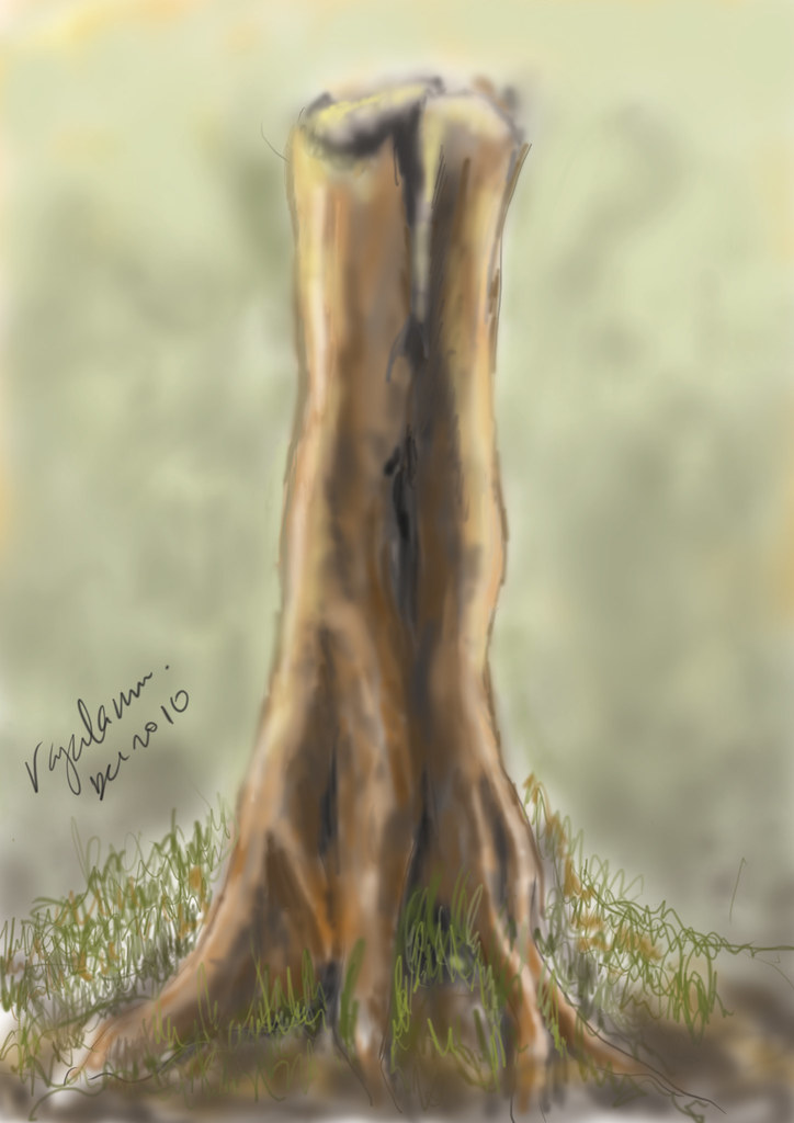 Standing Old Tree