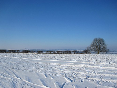 Ivinghoe winter scene 1