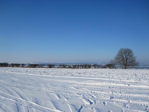 Ivinghoe winter scene 1