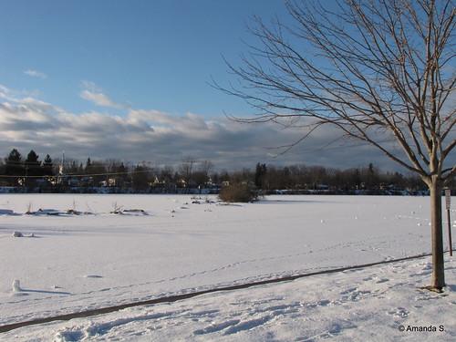 356/365 Frozen River