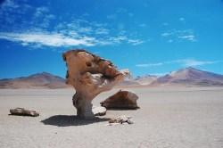 Bolivia Arbol de Piedra
