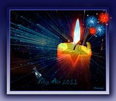 Feliz Año 2011! Happy New Year 2011! Felice anno nuovo 2011!