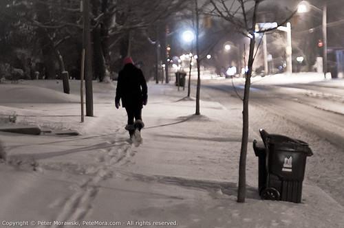 2011 First Snow: Walker