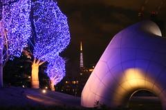 東京ミッドタウンのイルミネーション(Illuminations at Tokyo Mid-town)