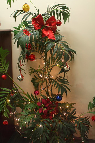 decorated-palm-tree