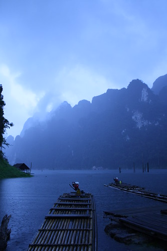Khao Sok National Park-jungle trek
