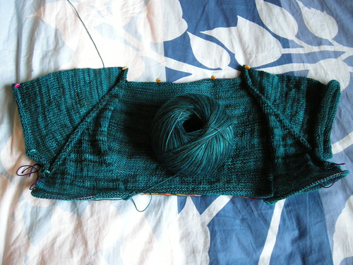 Featherweight cardigan 2011 005