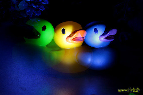 LightDuck