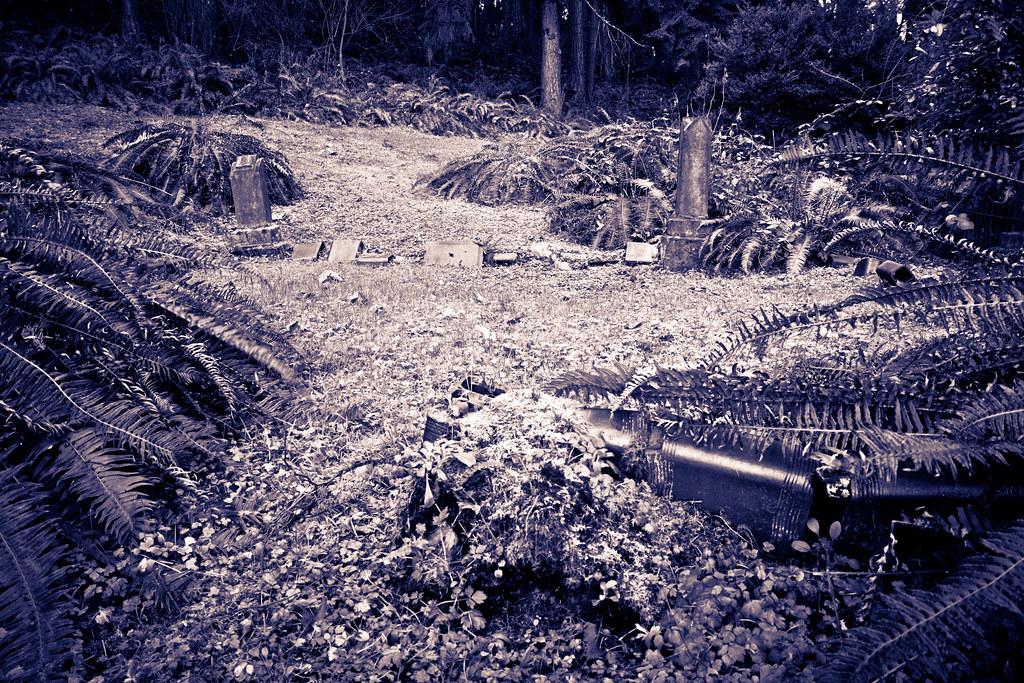 Swordfern graves