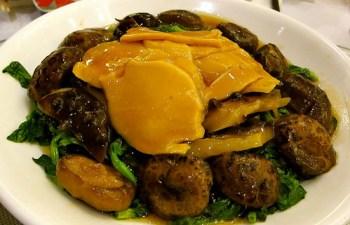 Abalone mushroom dao miu