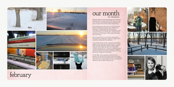 2011 Monthly Project | February