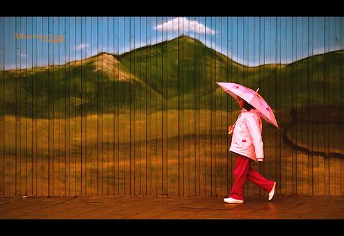 (70/365) Wonderland by albertopveiga