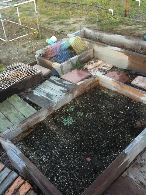 Beds in transition