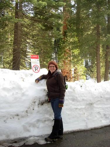 Lotta Snow