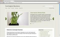 Carrington Business 1.1
