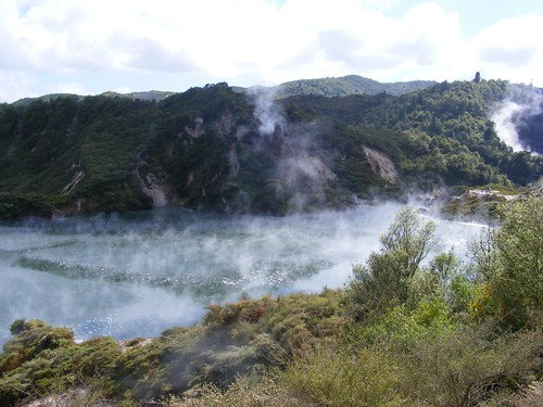 Picture from Waimangu Volcanic Valley