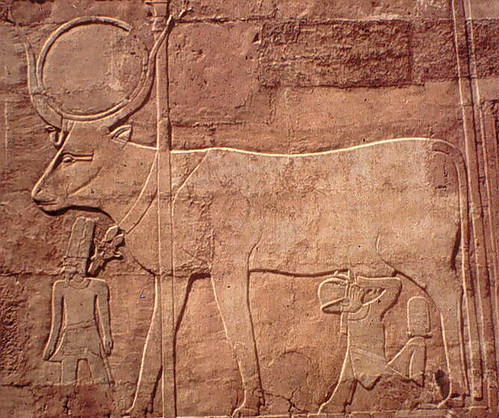 Egyptian cow relief 2
