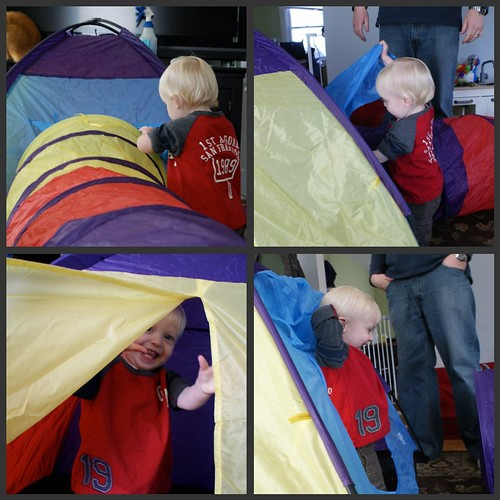 misc. tent collage
