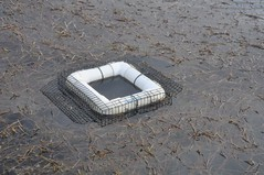Floating Turtle Trap