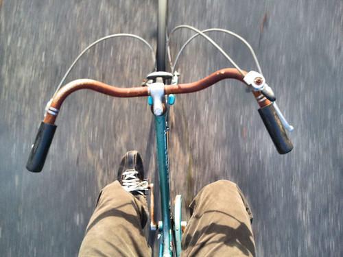 Rusty Bike Panda