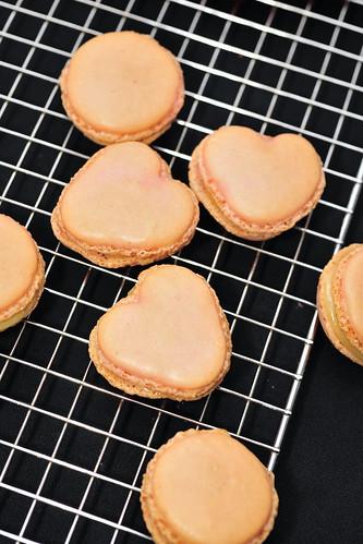 macarons 馬卡龍