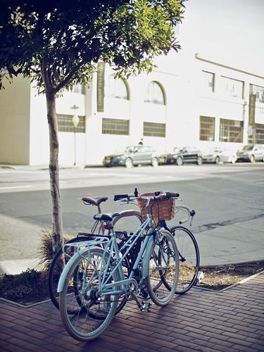 Bike marriage