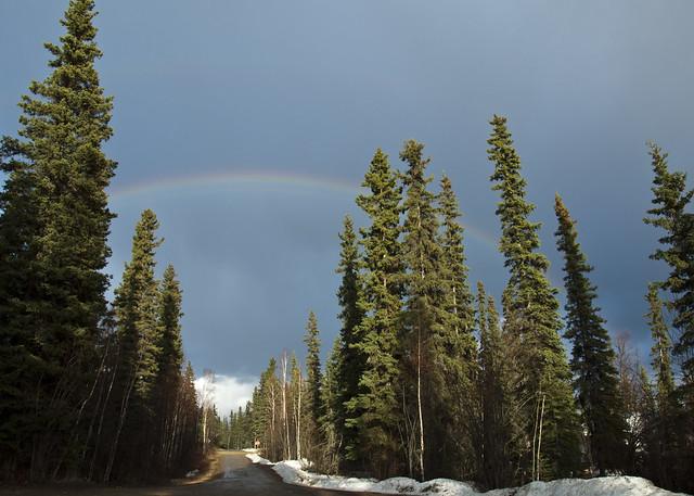 Rainbow on our Street