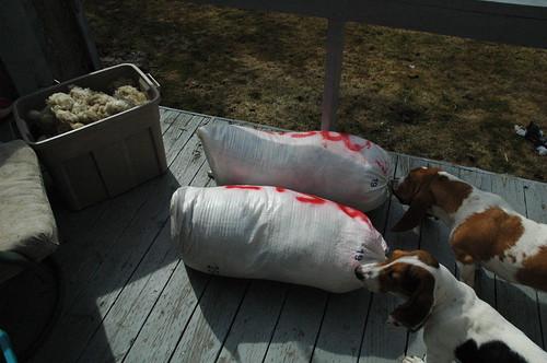 Grandma wool - three bags full