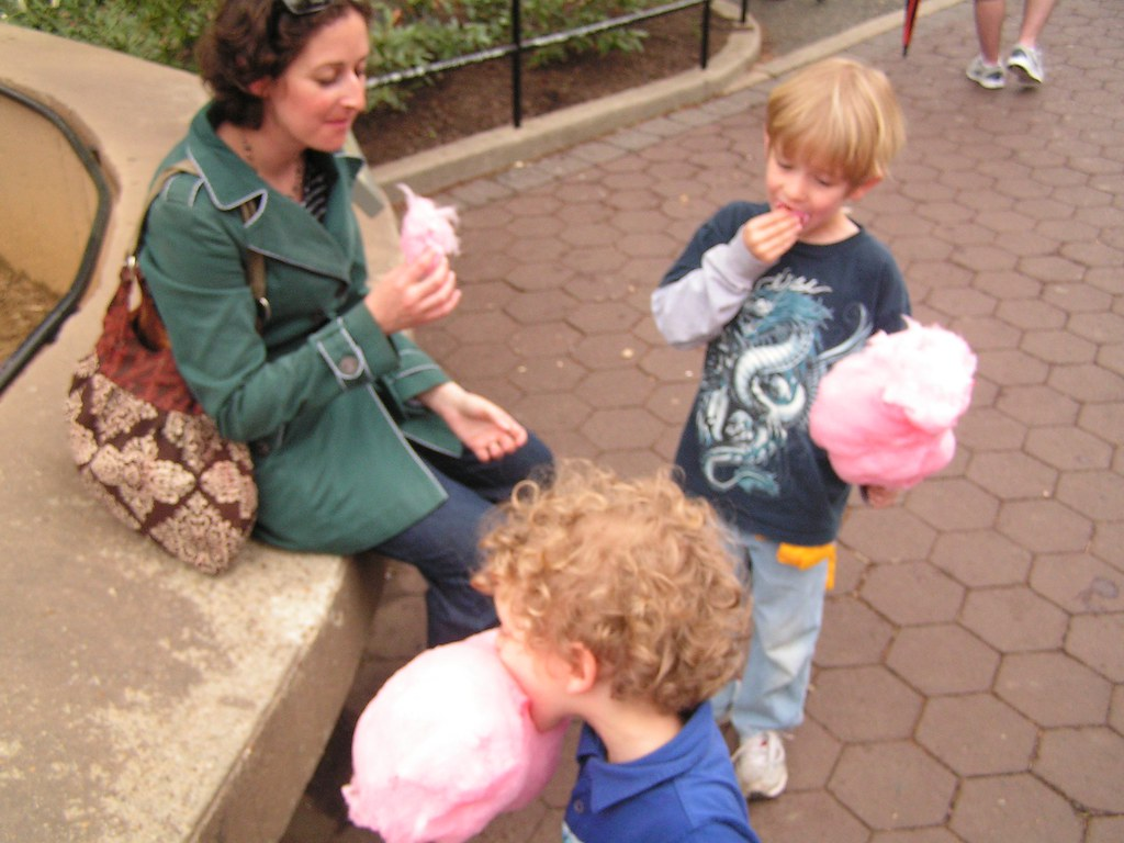 Cotton candy, National Zoo