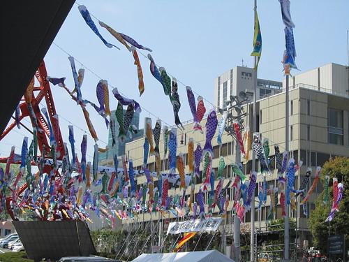 Carp flags