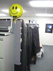 When you came into the office you saw this.