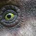 green animals eye