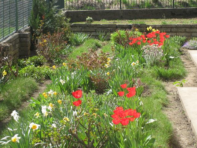The garden / Le jardin